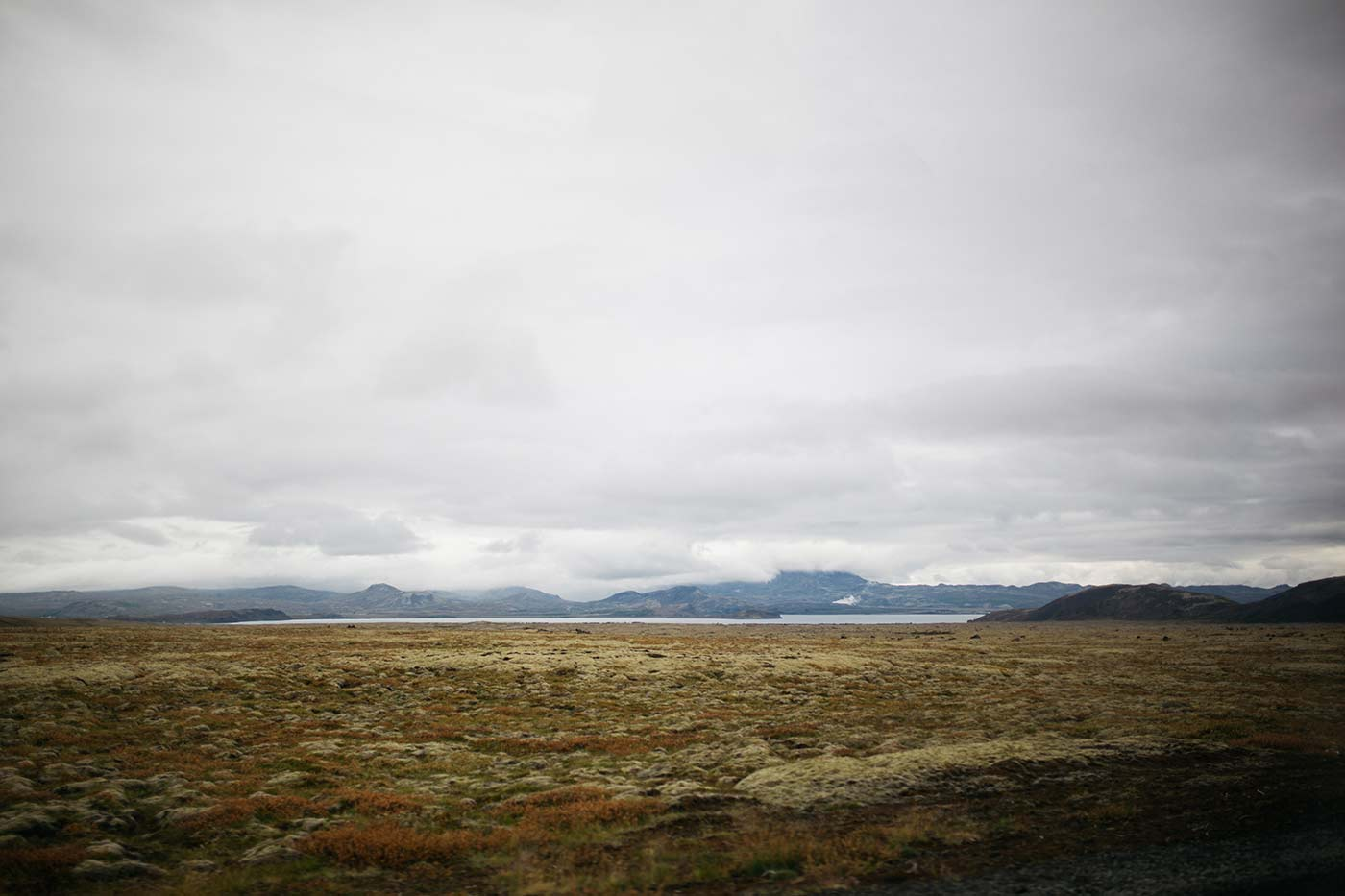 Wild - Iceland - Candice Lesage